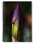 Iris Bud Spiral Notebook