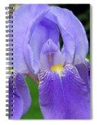 Iris Close Up 1 Spiral Notebook