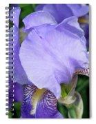 Iris Close Up 2 Spiral Notebook