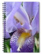 Iris Close Up 3 Spiral Notebook