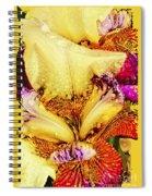 Iris - Customized Spiral Notebook