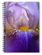 Iris Dancing In The Spring Spiral Notebook