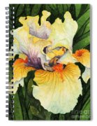 Iris Elegance Spiral Notebook