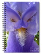 Iris Face Spiral Notebook