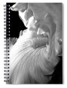Iris Flower In Black And White Spiral Notebook