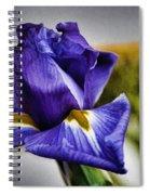Iris Flower Macro Spiral Notebook