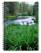 Iris Flowers By The Metolius River Spiral Notebook