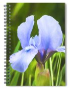 Pale Purple Iris - Impressions Of Spring Spiral Notebook