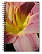 Iris Heart Spiral Notebook