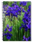 Iris In The Field Spiral Notebook