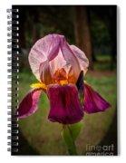 Iris In The Spotlight Spiral Notebook