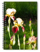 Iris In The Sun Spiral Notebook