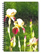 Iris In Watercolor Spiral Notebook