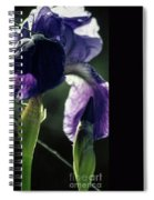 Spring's Gift Spiral Notebook