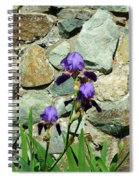 Iris Portrait Spiral Notebook