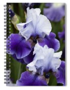 Iris Purple And White Fine Art Floral Photography Print As A Gift Spiral Notebook