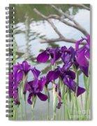 Iris Purple Lavender Spiral Notebook