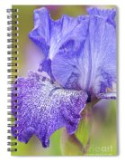 Iris Purple Pepper Spiral Notebook