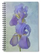 Iris Texture Spiral Notebook