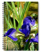 Iris With Frog Spiral Notebook