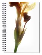 Iris Yellow Spiral Notebook
