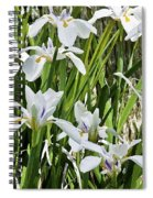 Irises Dancing In The Sun Painted Spiral Notebook