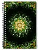 Irish Influence 1 Part 2 Spiral Notebook