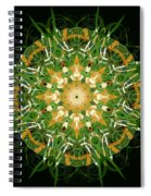 Irish Influence 3 Spiral Notebook