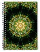 Irish Influence 3 Part 2 Spiral Notebook