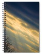 Irish Sunbeams Spiral Notebook