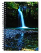 Iron Creek Falls Spiral Notebook