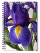 iRus  Spiral Notebook