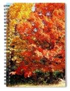 Is Autumn Already Spiral Notebook