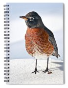 Is It Spring Yet? Spiral Notebook