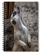 Is It You God Spiral Notebook