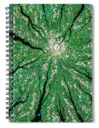Isla In The Sky With Diamonds Spiral Notebook