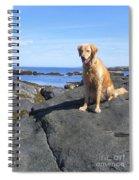 Island Dog Spiral Notebook