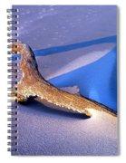 Island Driftwood Spiral Notebook
