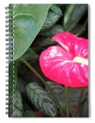 Island Flower Spiral Notebook
