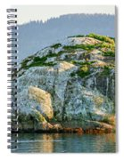 Island In A Lake, Glacier Bay National Spiral Notebook