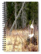 Island Park Cattails Spiral Notebook