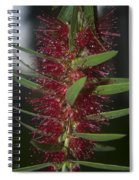Island Rains Spiral Notebook
