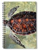 Island Turtle Spiral Notebook