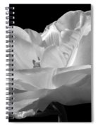 Isolated White Tulip Spiral Notebook