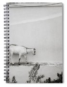 The Surreal Goat Spiral Notebook