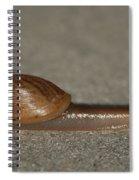It Ain't Heavy Spiral Notebook