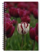 It Is Beautiful Being Different Spiral Notebook