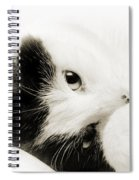 It Is Hard To Be So Cute Spiral Notebook