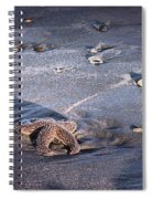 It Matters To This One Isle Of Palms Sc Spiral Notebook