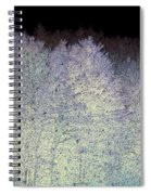 It Snowed Spiral Notebook